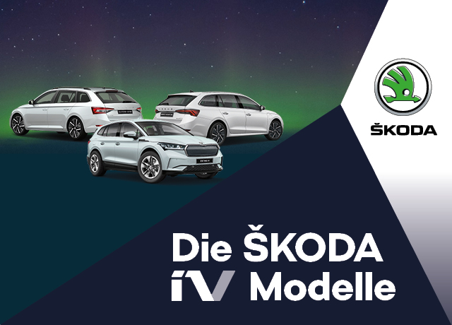 ŠKODA Business iV-OFFENSIVE